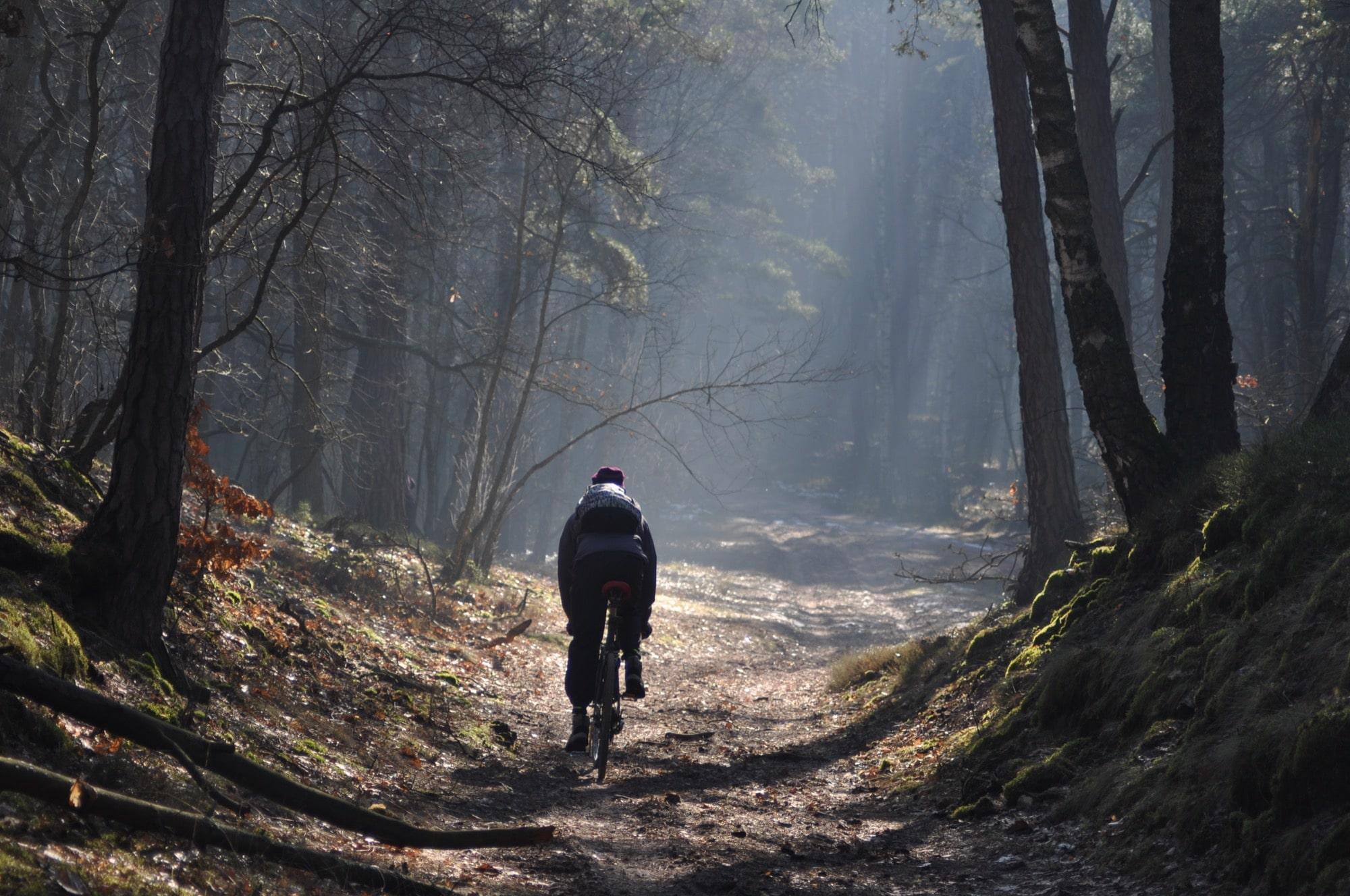 Mapy rowerowe szlaków turystycznych w Kampinosie. Najlepsze bazy wypadowe w okolicy Warszawy: Izabelin, Dziekanów Leśny, Leszno, Leoncin, Granica, Żelazowa Wola, Nowe Mostki