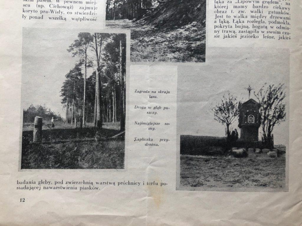 """Kampinos uwieczniony na zdjęciach z 1933 roku. Ilustracje do artykułu z tygodnika """"Bluszcz"""""""